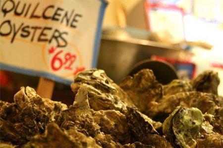 oysters as aphrodisiac
