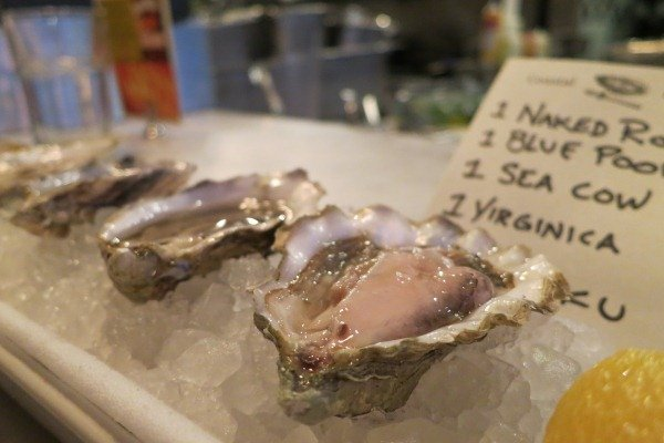 Oyster Selection at Coastal Kitchen. Photo Credit: Erina Malarkey