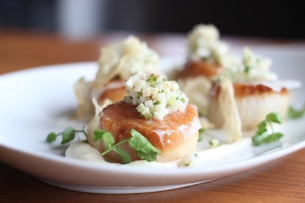 Sea Scallops. Photo by Jennifer Dastouri.