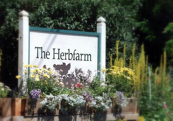 the herbfarm1