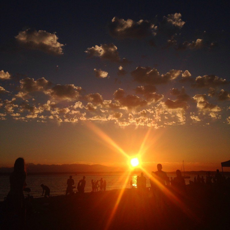 Golden Gardens by Corinne Whiting
