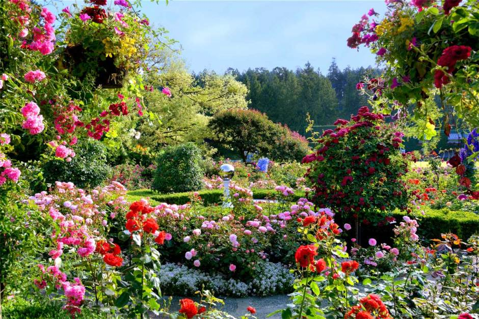 Photo by Butchart Gardens.